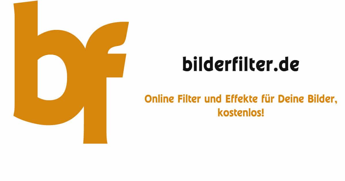 kostenlose filter und effekte für deine bilder